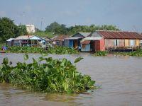 Bassac (delta Mekongu)